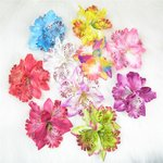 Haarspeld/corsage orchidee